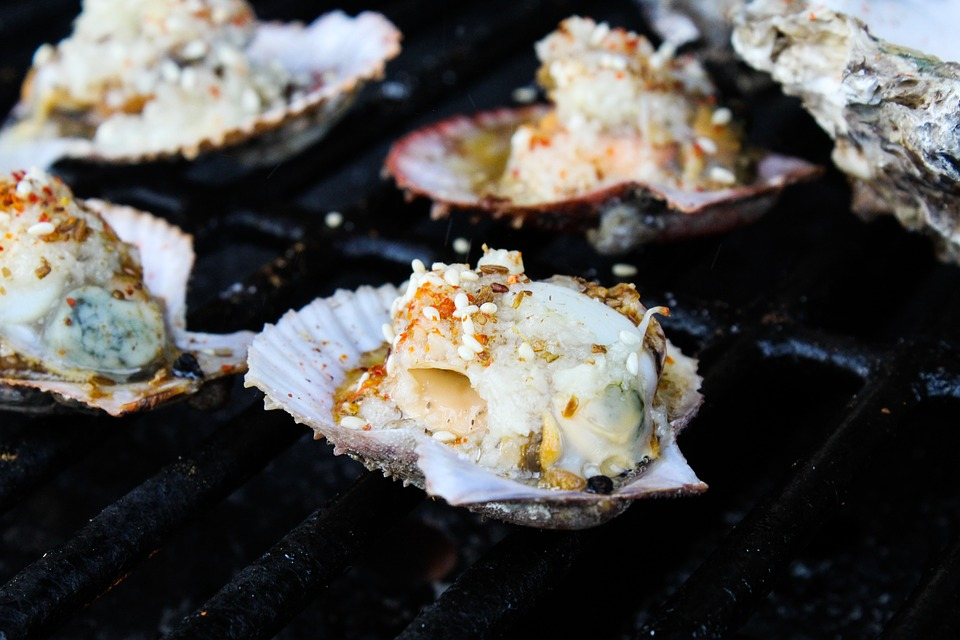 Freshly caught oysters being grilled on a barbecue